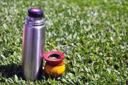 Top 15 Best Tea Infuser Travel Mugs in 2020 - Ultimate Guide